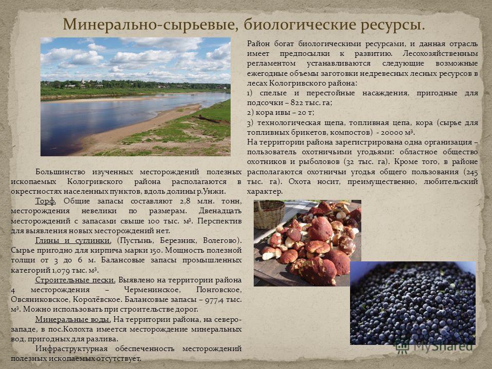 Минерально-сырьевые, биологические ресурсы. Большинство изученных месторождений полезных ископаемых Кологривского района располагаются в окрестностях населенных пунктов, вдоль долины р.Унжи. Торф. Общие запасы составляют 2,8 млн. тонн, месторождения