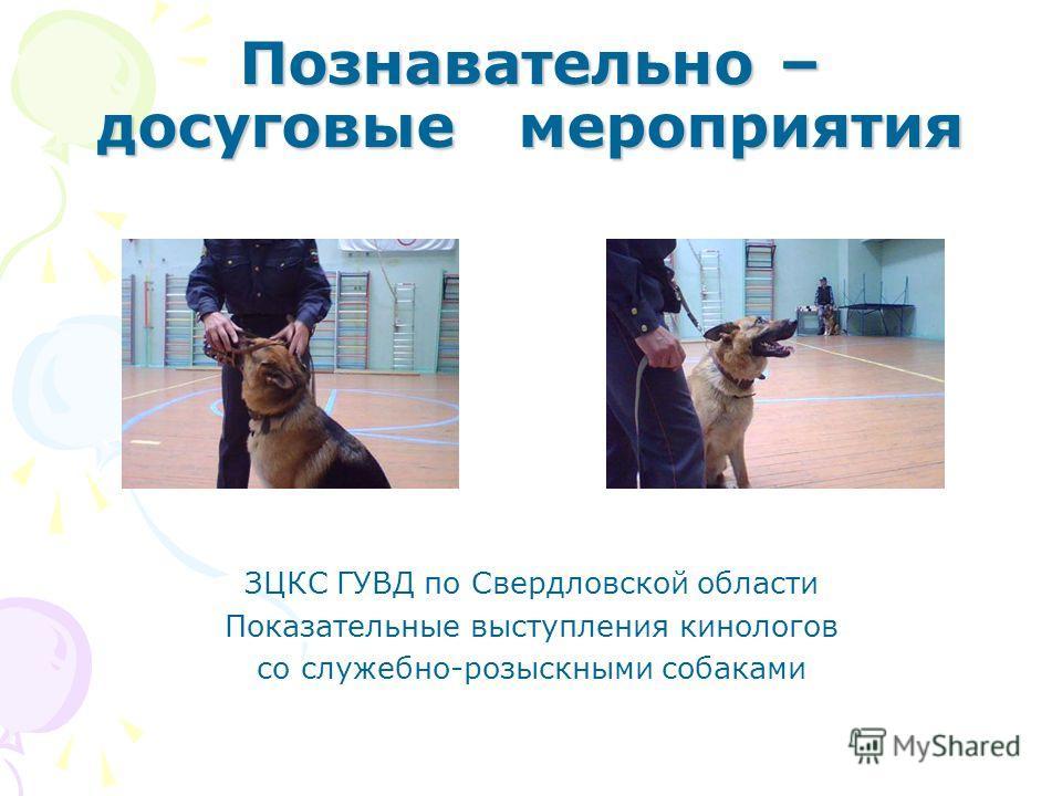 Познавательно – досуговые мероприятия ЗЦКС ГУВД по Свердловской области Показательные выступления кинологов со служебно-розыскными собаками