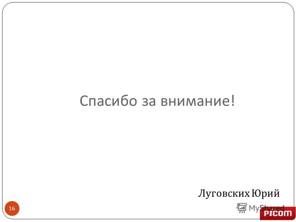 Спасибо за внимание ! 16 Луговских Юрий