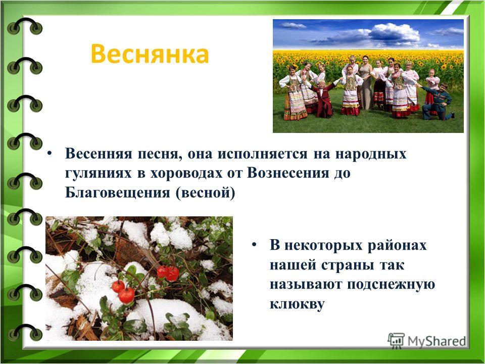 Веснянка Весенняя песня, она исполняется на народных гуляниях в хороводах от Вознесения до Благовещения (весной) В некоторых районах нашей страны так называют подснежную клюкву