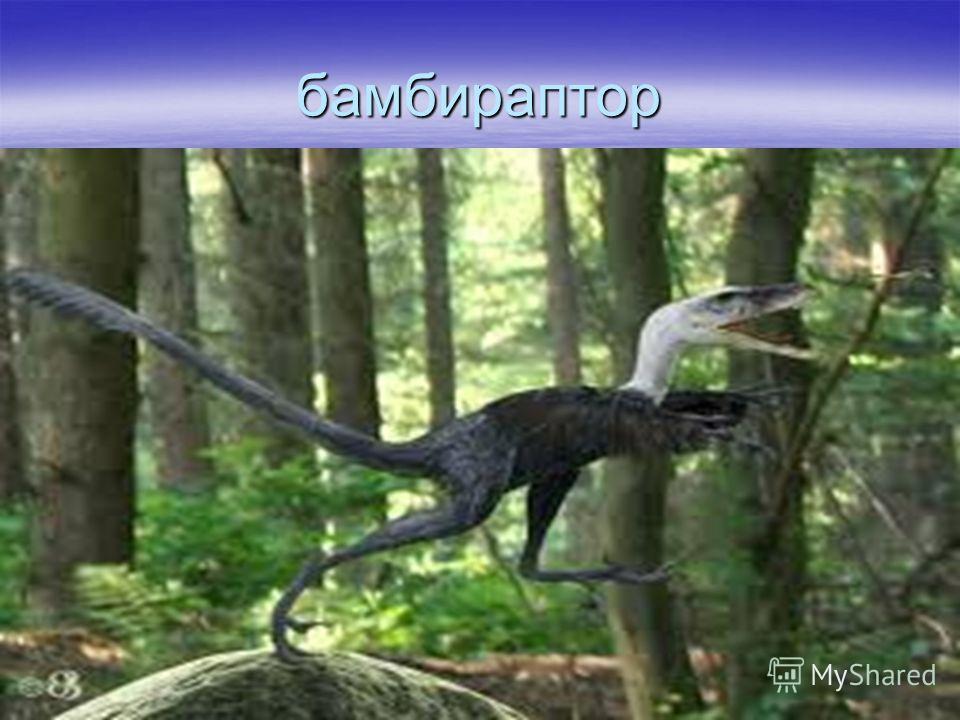 ирритатор Обитал на территории нынешней Южной Америки. Вел водный и наземный образ жизни. Питался рыбой, небольшими травоядными динозаврами, а также некоторыми из рода птерозавровые. Обитал на территории нынешней Южной Америки. Вел водный и наземный