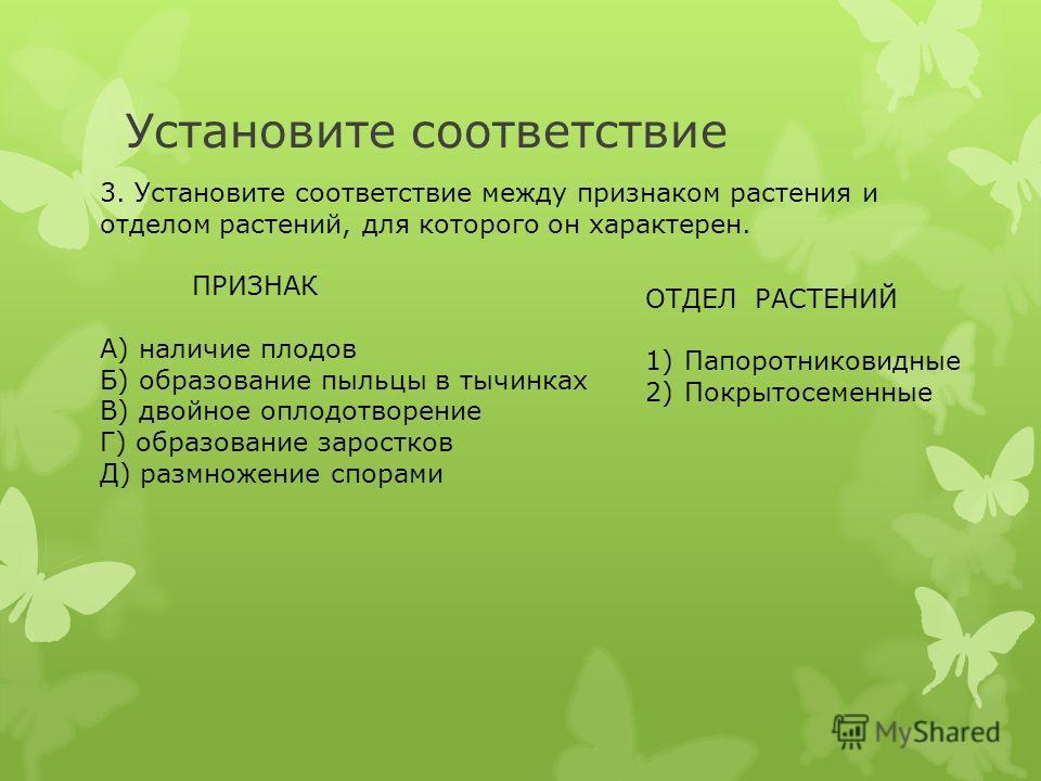 Установите соответствие 3. Установите соответствие между признаком растения и отделом растений, для которого он характерен. ПРИЗНАК А) наличие плодов Б) образование пыльцы в тычинках В) двойное оплодотворение Г) образование заростков Д) размножение с