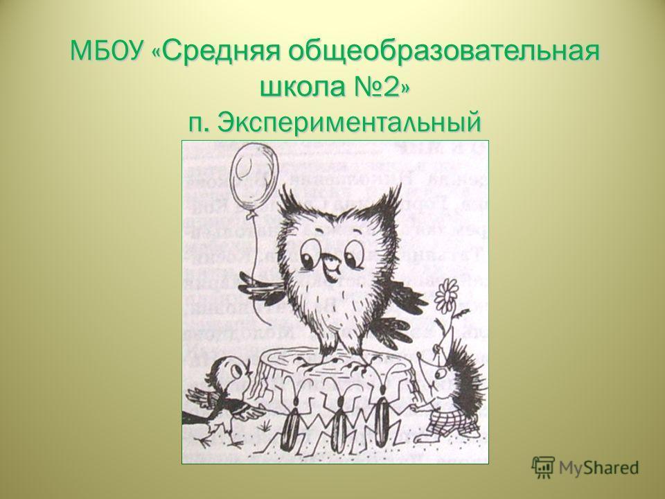 МБОУ « Средняя общеобразовательная школа 2» п. Экспериментальный