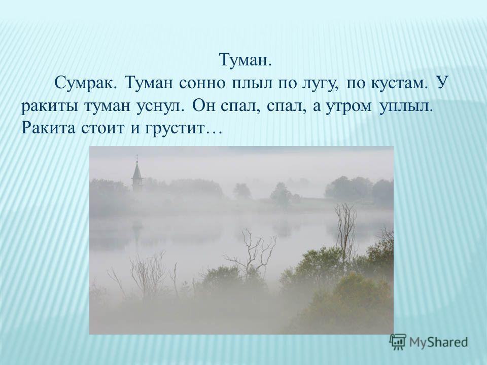Туман. Сумрак. Туман сонно плыл по лугу, по кустам. У ракиты туман уснул. Он спал, спал, а утром уплыл. Ракита стоит и грустит…