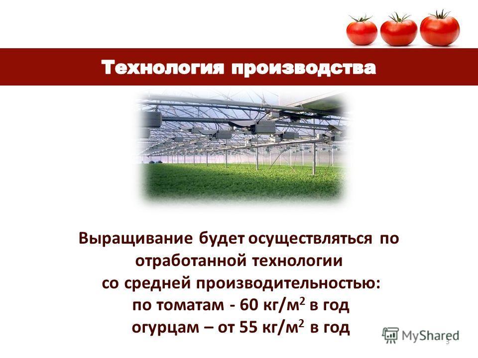 3 Выращивание будет осуществляться по отработанной технологии со средней производительностью: по томатам - 60 кг/м 2 в год огурцам – от 55 кг/м 2 в год
