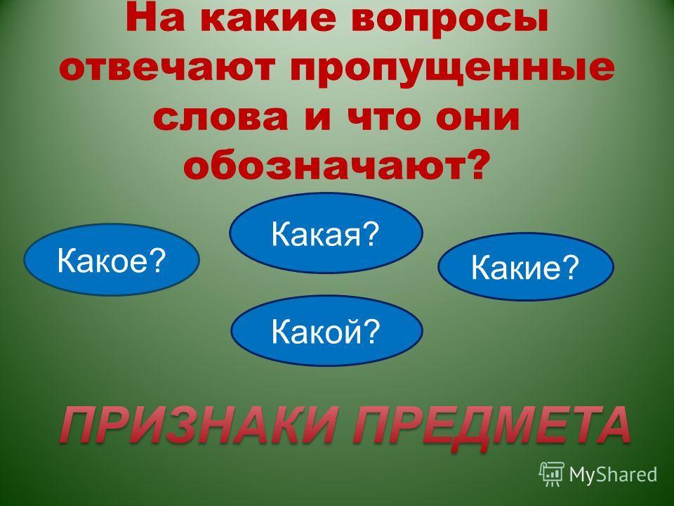 На какие вопросы отвечают пропущенные слова и что они обозначают? Какое? Какая? Какие? Какой?