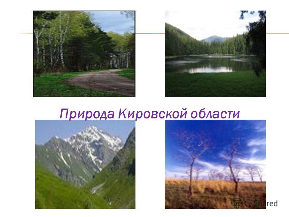 Природа Кировской области