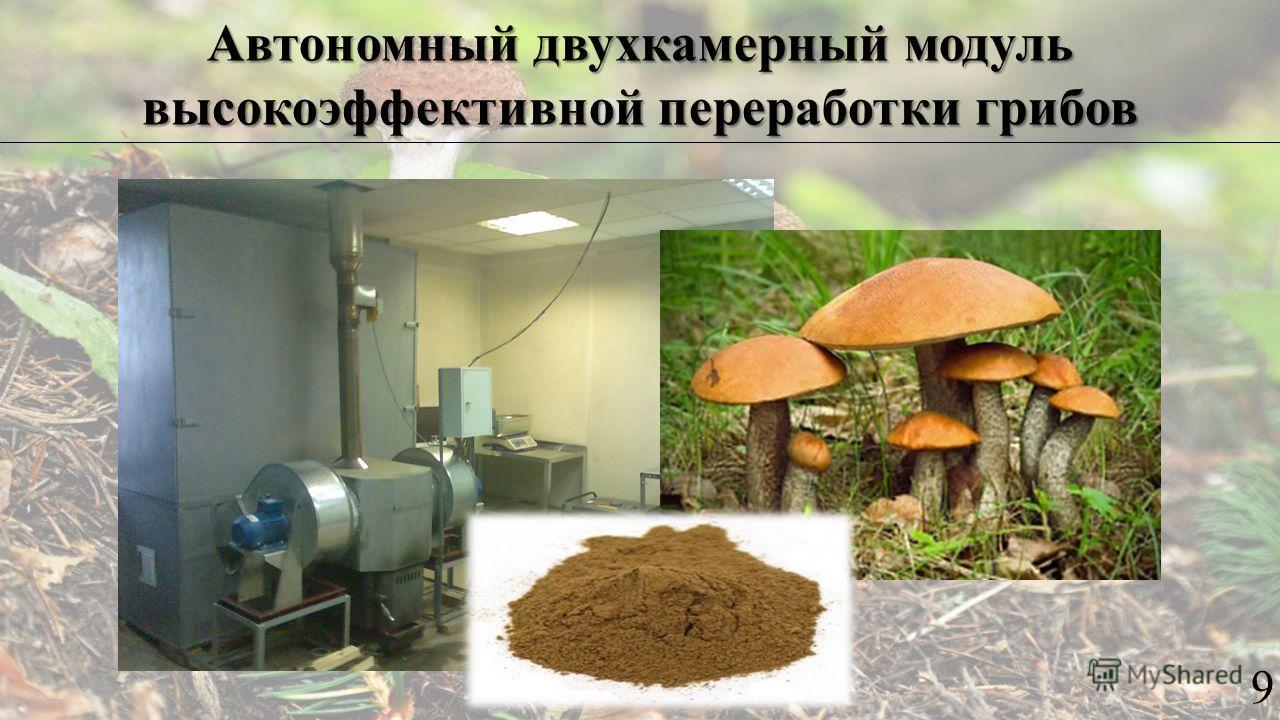 Автономный двухкамерный модуль высокоэффективной переработки грибов 9