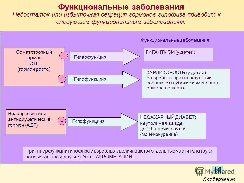 Функциональные заболевания Недостаток или избыточная секреция гормонов гипофиза приводит к следующим функциональным заболеваниям. Соматотропный гормон СТГ (гормон роста) Вазопрессин или антидиуретический гормон (АДГ) При гиперфункции гипофиза у взрос
