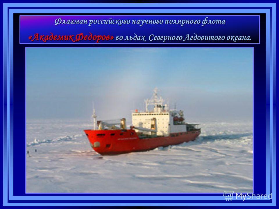 Флагман российского научного полярного флота «Академик Федоров» во льдах Северного Ледовитого океана.