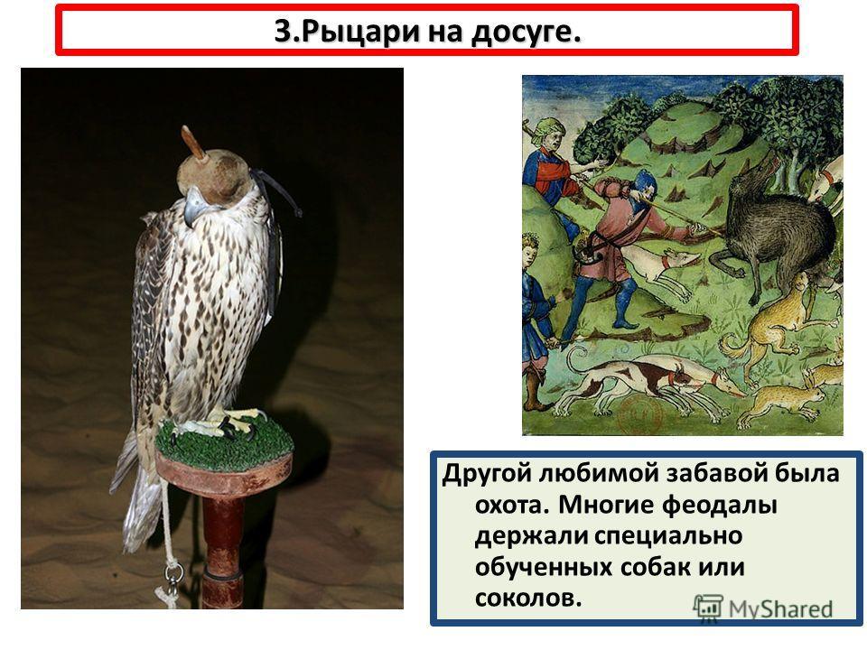 3.Рыцари на досуге. Другой любимой забавой была охота. Многие феодалы держали специально обученных собак или соколов.