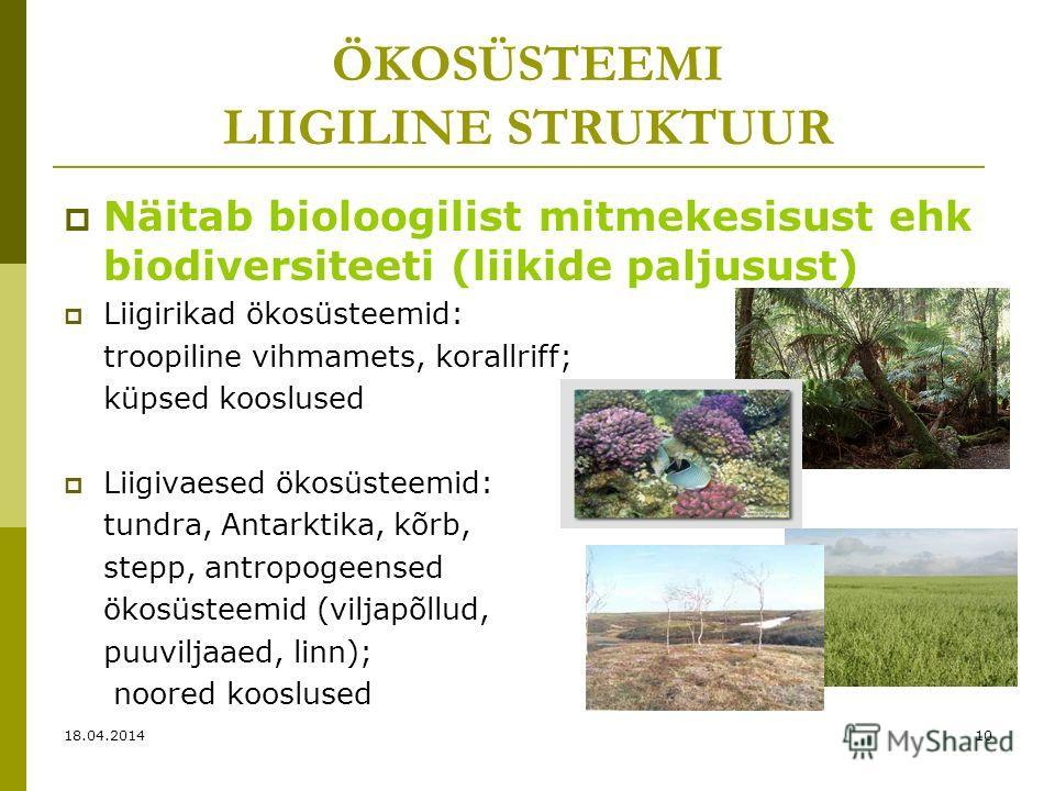 ÖKOSÜSTEEMI LIIGILINE STRUKTUUR Näitab bioloogilist mitmekesisust ehk biodiversiteeti (liikide paljusust) Liigirikad ökosüsteemid: troopiline vihmamets, korallriff; küpsed kooslused Liigivaesed ökosüsteemid: tundra, Antarktika, kõrb, stepp, antropoge