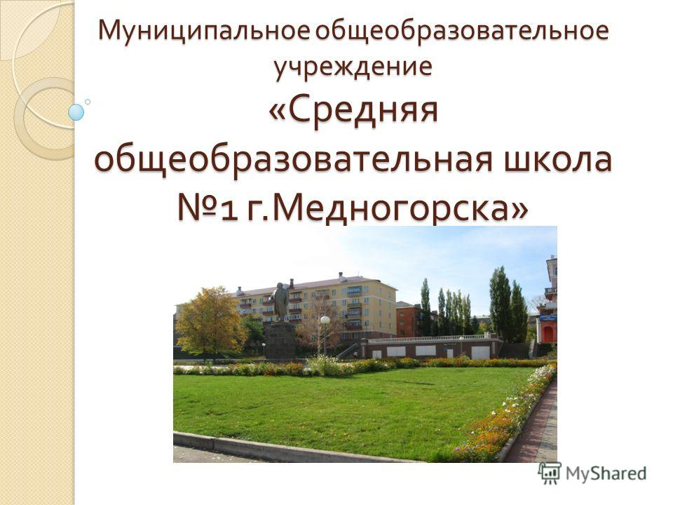 Муниципальное общеобразовательное учреждение « Средняя общеобразовательная школа 1 г. Медногорска »