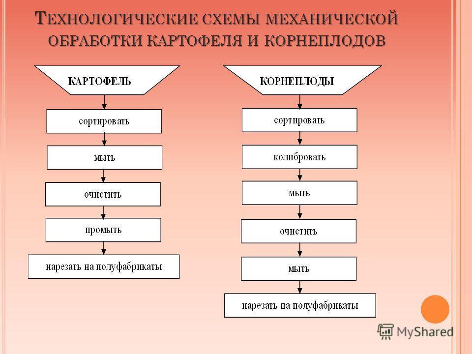 Т ЕХНОЛОГИЧЕСКИЕ СХЕМЫ МЕХАНИЧЕСКОЙ ОБРАБОТКИ КАРТОФЕЛЯ И КОРНЕПЛОДОВ