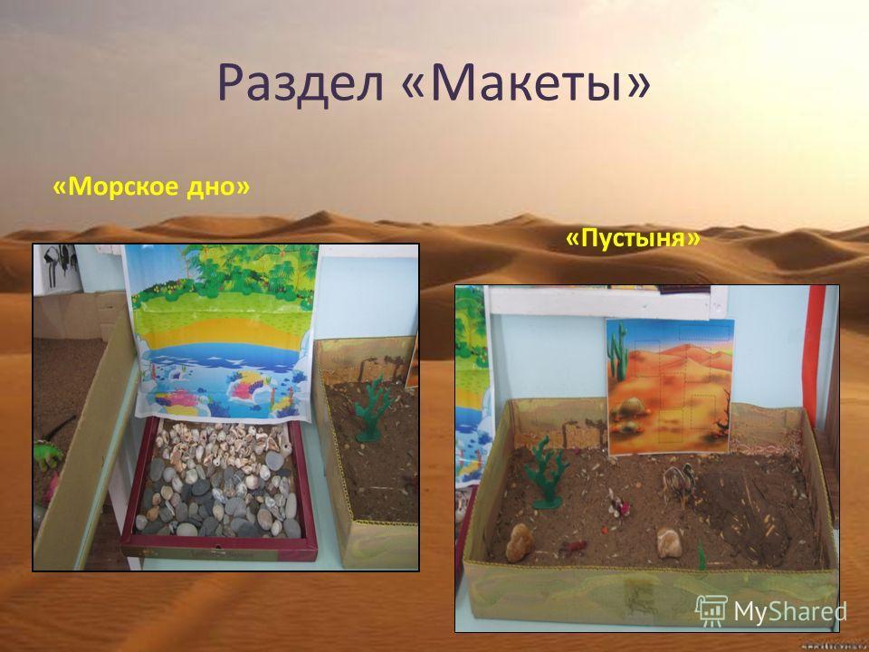 Раздел «Макеты» «Морское дно» «Пустыня»