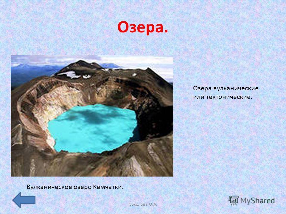 Озера. Соколова О.А. Озера вулканические или тектонические. Вулканическое озеро Камчатки.