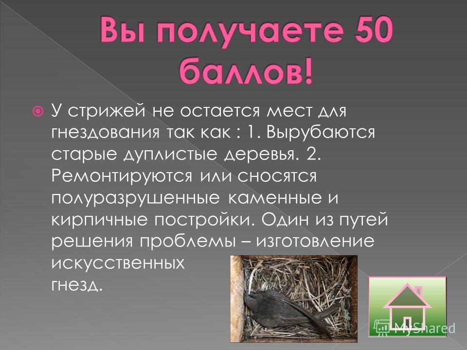 У стрижей не остается мест для гнездования так как : 1. Вырубаются старые дуплистые деревья. 2. Ремонтируются или сносятся полуразрушенные каменные и кирпичные постройки. Один из путей решения проблемы – изготовление искусственных гнезд.