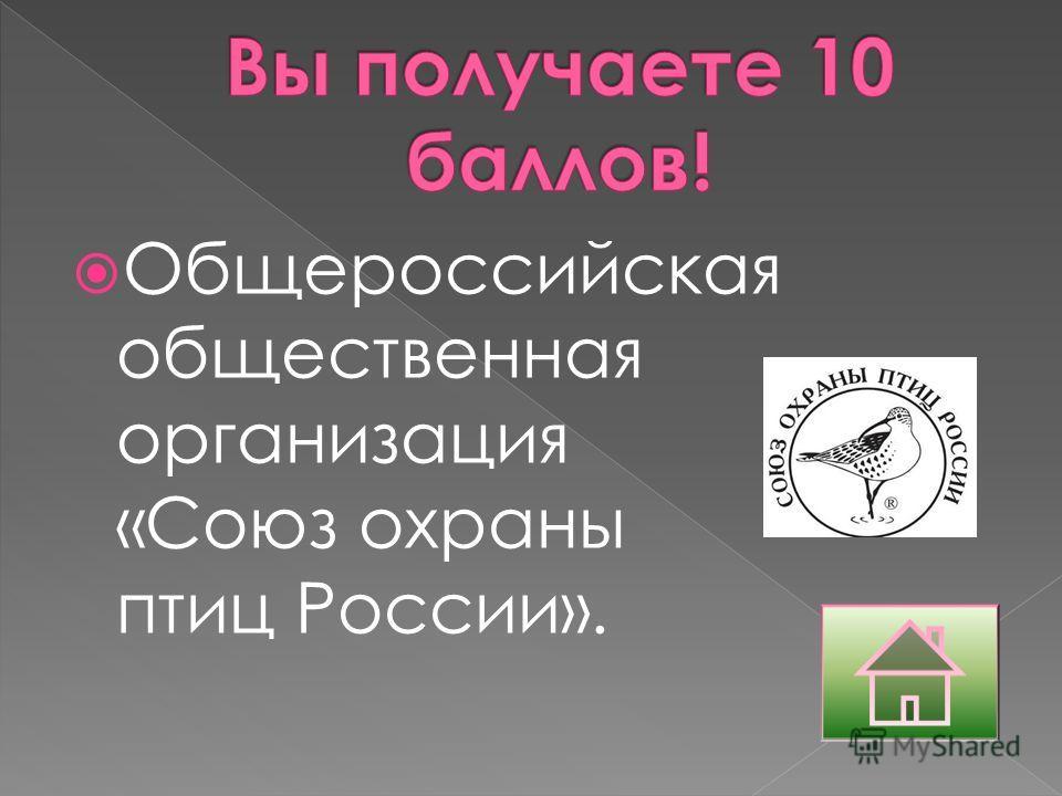Общероссийская общественная организация «Союз охраны птиц России».
