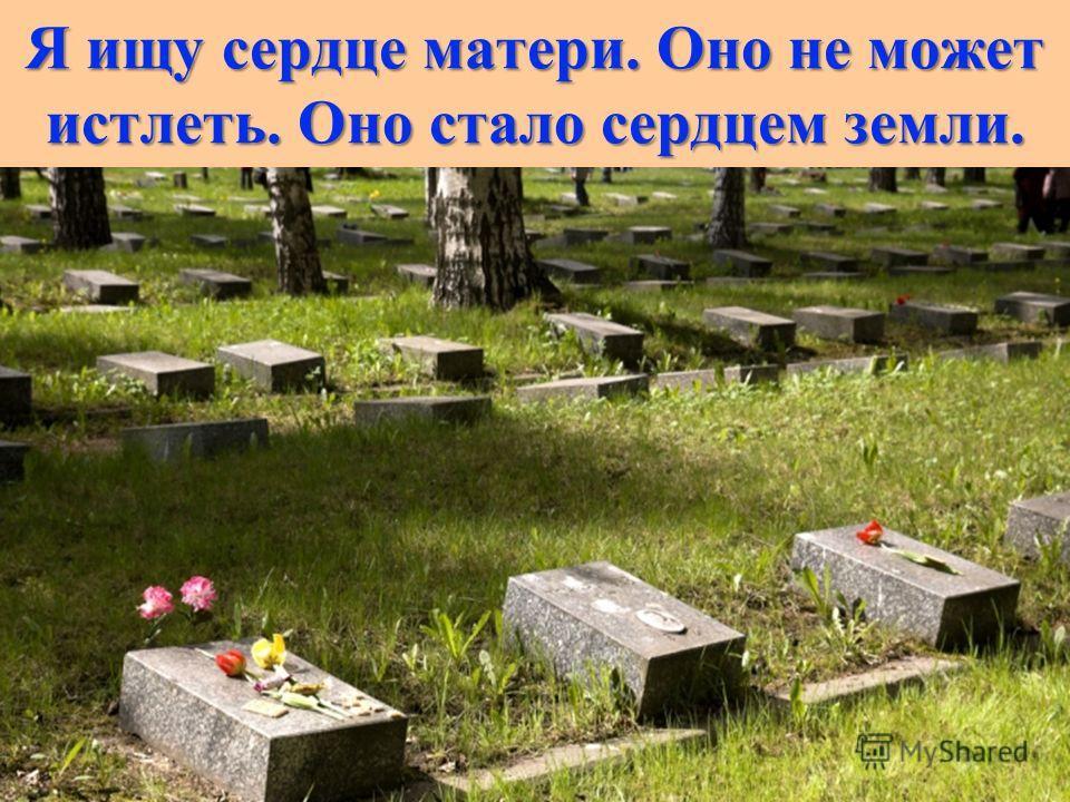 Я ищу сердце матери. Оно не может истлеть. Оно стало сердцем земли.