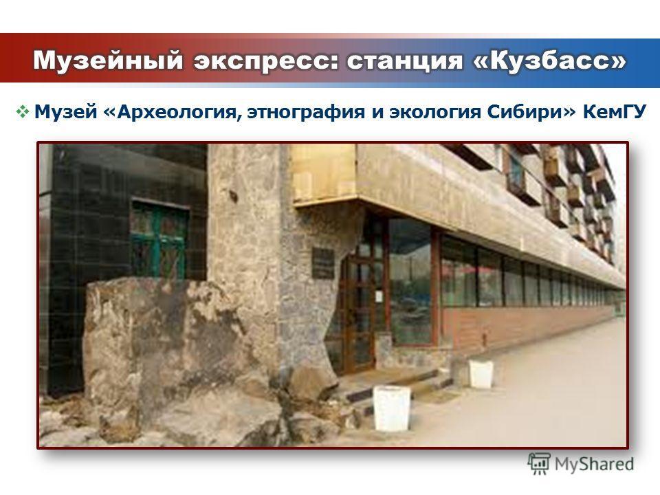Музей «Археология, этнография и экология Сибири» КемГУ