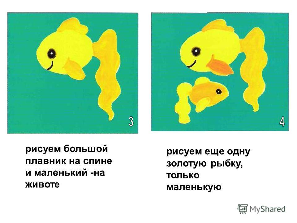 рисуем большой плавник на спине и маленький -на животе рисуем еще одну золотую рыбку, только маленькую