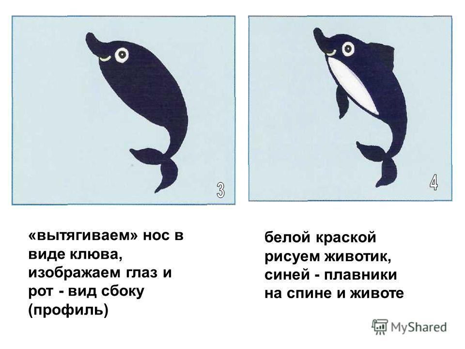 «вытягиваем» нос в виде клюва, изображаем глаз и рот - вид сбоку (профиль) белой краской рисуем животик, синей - плавники на спине и животе
