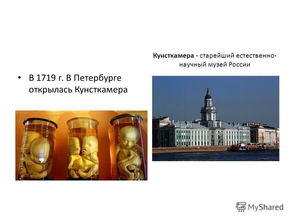 В 1719 г. В Петербурге открылась Кунсткамера Кунсткамера - старейший естественно- научный музей России