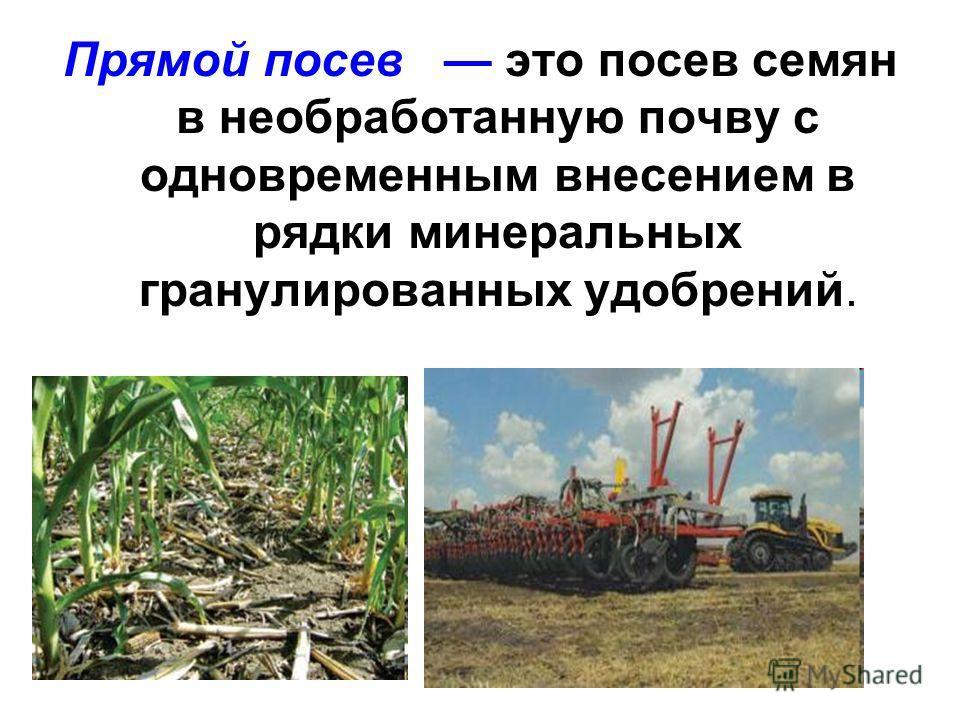Прямой посев это посев семян в необработанную почву с одновременным внесением в рядки минеральных гранулированных удобрений.