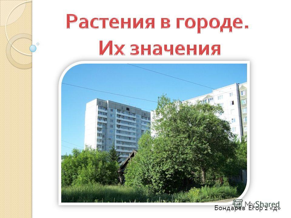 Бондарев Егор 2 « д »
