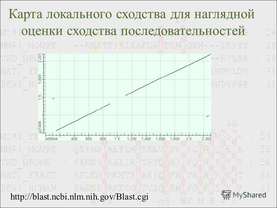http://blast.ncbi.nlm.nih.gov/Blast.cgi Карта локального сходства для наглядной оценки сходства последовательностей