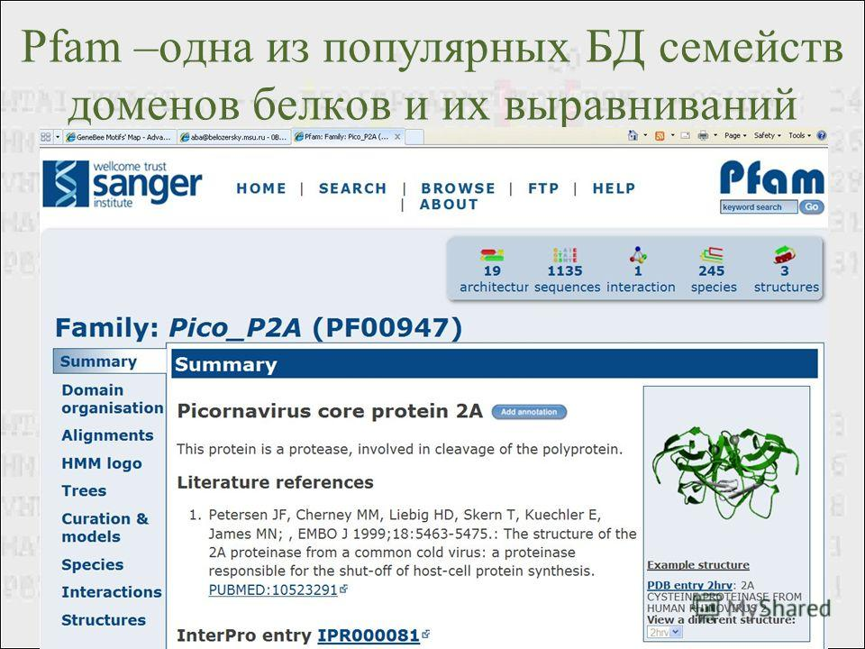Pfam –одна из популярных БД семейств доменов белков и их выравниваний