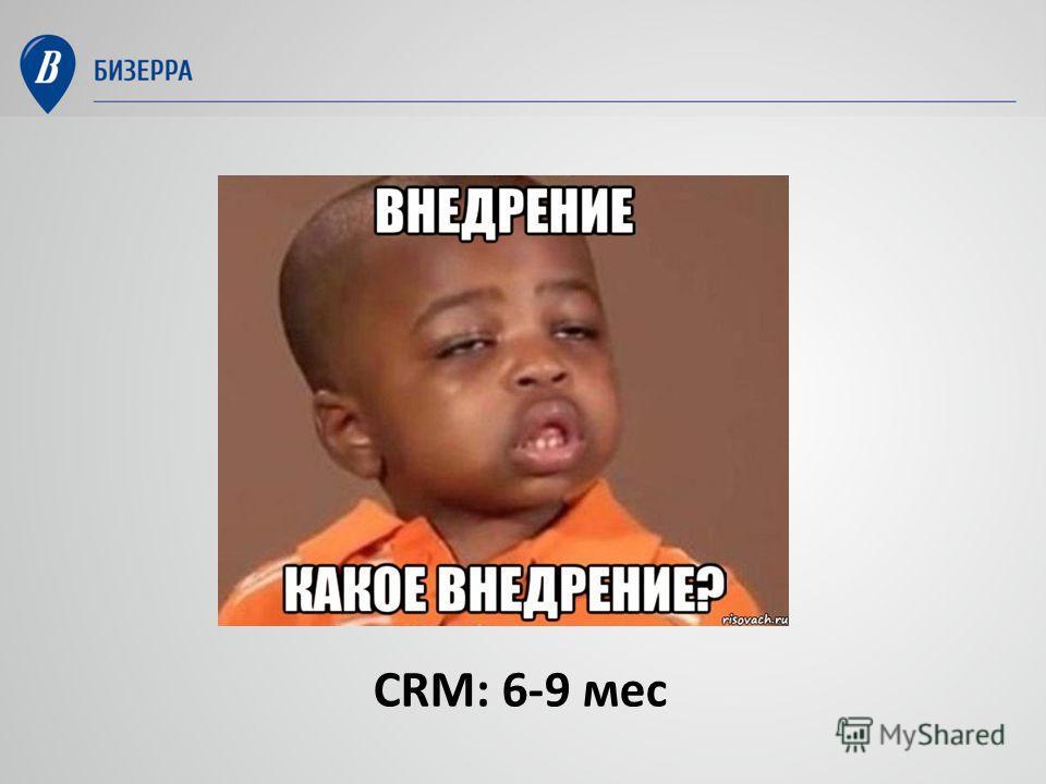 CRM: 6-9 мес