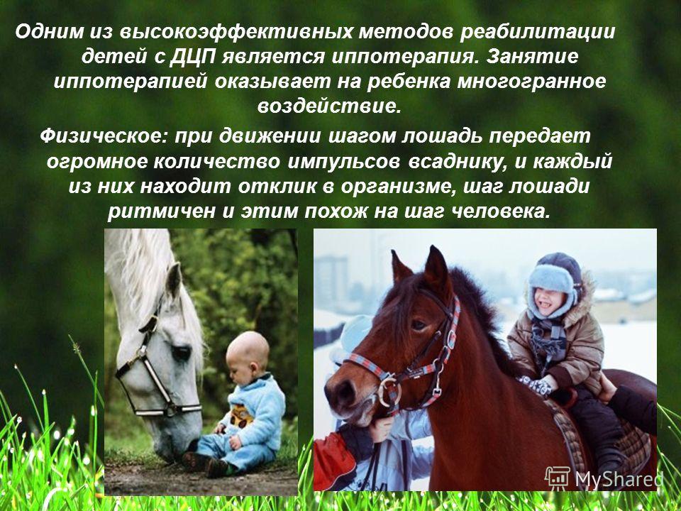Одним из высокоэффективных методов реабилитации детей с ДЦП является иппотерапия. Занятие иппотерапией оказывает на ребенка многогранное воздействие. Физическое: при движении шагом лошадь передает огромное количество импульсов всаднику, и каждый из н