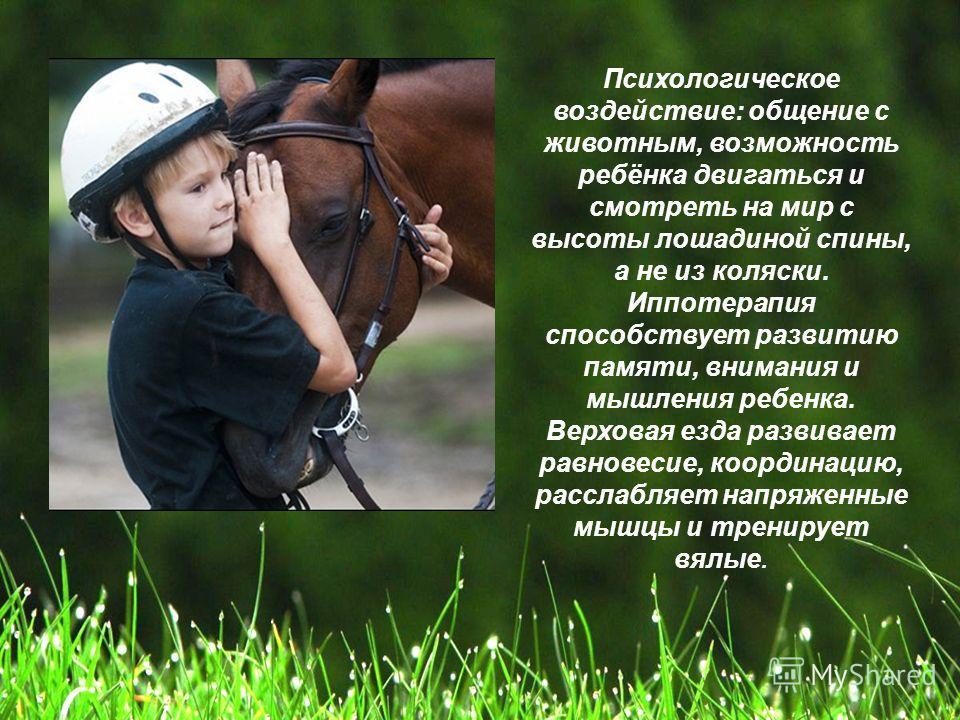 Психологическое воздействие: общение с животным, возможность ребёнка двигаться и смотреть на мир с высоты лошадиной спины, а не из коляски. Иппотерапия способствует развитию памяти, внимания и мышления ребенка. Верховая езда развивает равновесие, коо