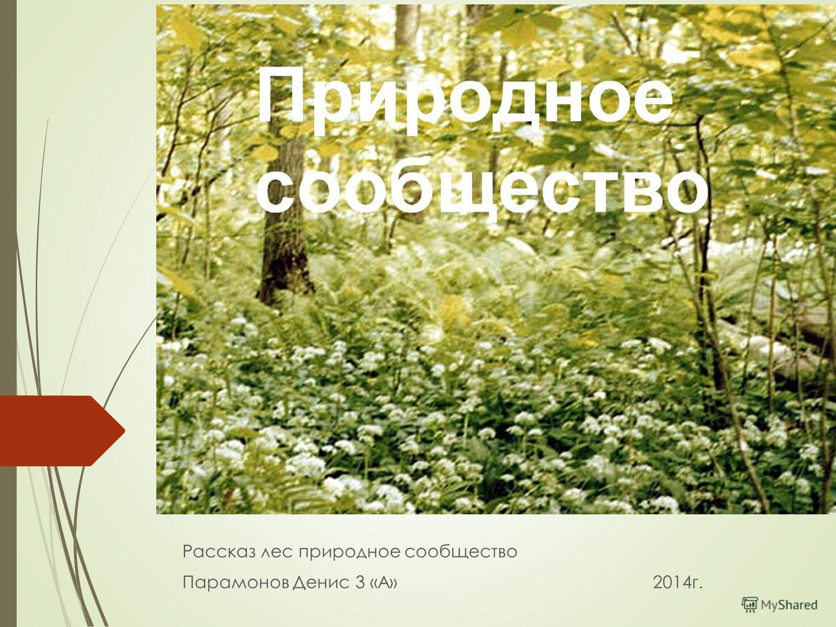 Рассказ лес природное сообщество Парамонов Денис 3 «А» 2014г.