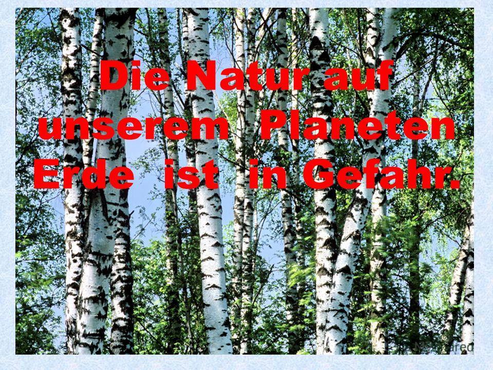 Die Natur auf unserem Planeten Erde ist in Gefahr.