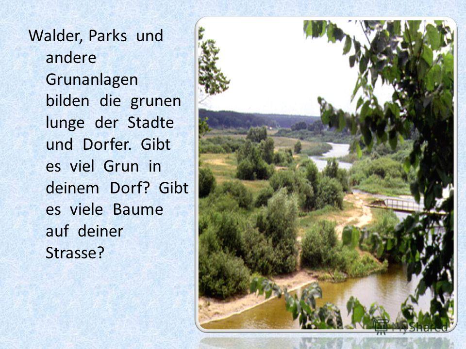Walder, Parks und andere Grunanlagen bilden die grunen lunge der Stadte und Dorfer. Gibt es viel Grun in deinem Dorf? Gibt es viele Baume auf deiner Strasse?