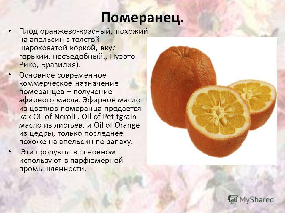 Померанец. Плод оранжево-красный, похожий на апельсин с толстой шероховатой коркой, вкус горький, несъедобный., Пуэрто- Рико, Бразилия). Основное современное коммерческое назначение померанцев – получение эфирного масла. Эфирное масло из цветков поме