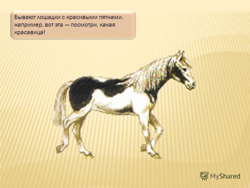 Лошади различаются по масти это означает, что они бывают разных цветов. Например, вороная то есть черная масть, еще рыжая и гнедая. Также серая, саврасая, буланая и другие.