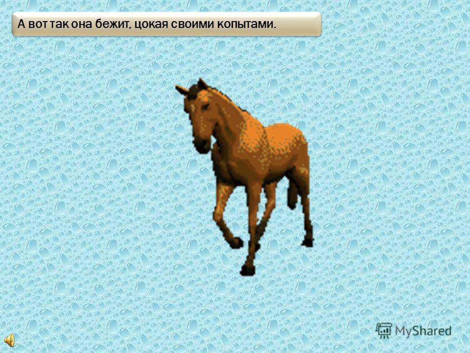 Смотри это лошадка! Вот так она ржет и фыркает.