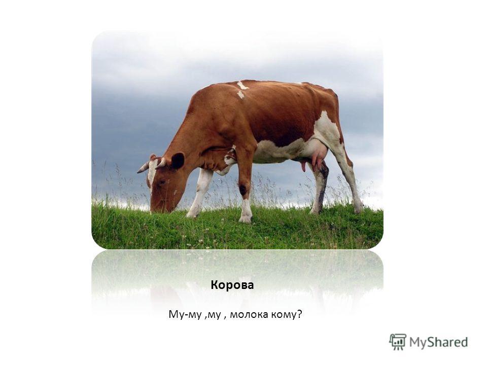 Му-му,му, молока кому? Корова