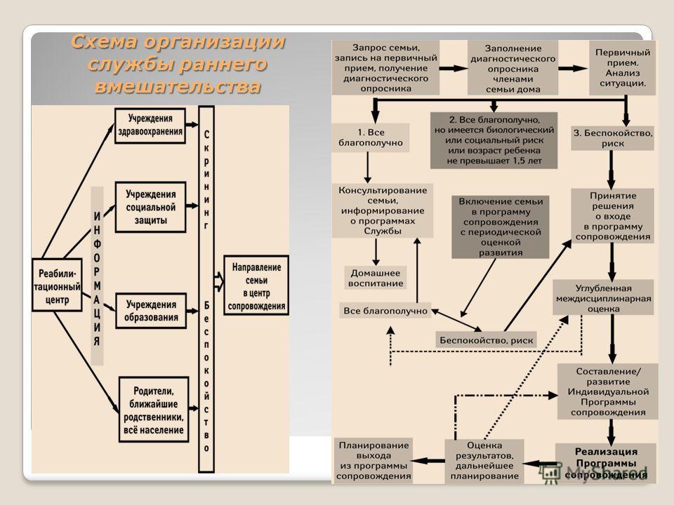 Схема организации службы раннего вмешательства