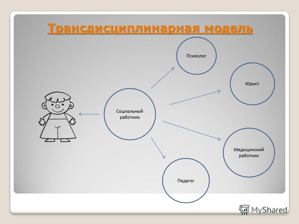 Трансдисциплинарная модель