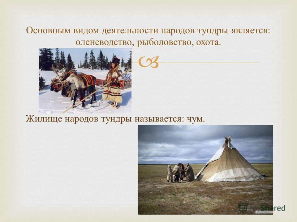 Жилище народов тундры называется : чум. Основным видом деятельности народов тундры является : оленеводство, рыболовство, охота.