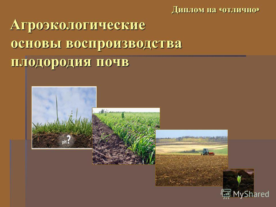 Диплом на « отлично » Агроэкологические основы воспроизводства плодородия почв Диплом на « отлично » Агроэкологические основы воспроизводства плодородия почв