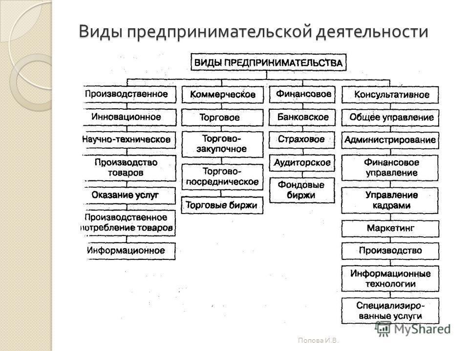 Виды предпринимательской деятельности Попова И. В.