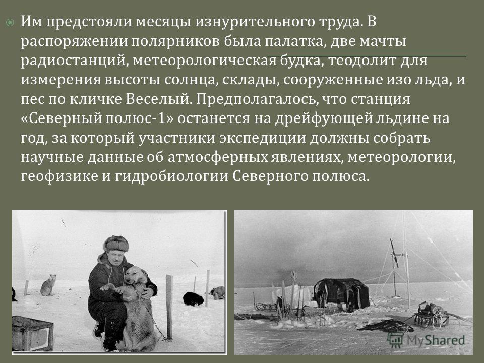 Им предстояли месяцы изнурительного труда. В распоряжении полярников была палатка, две мачты радиостанций, метеорологическая будка, теодолит для измерения высоты солнца, склады, сооруженные изо льда, и пес по кличке Веселый. Предполагалось, что станц