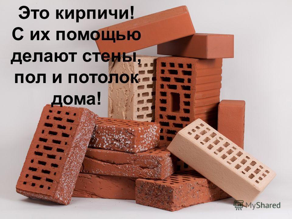 Это кирпичи! С их помощью делают стены, пол и потолок дома!
