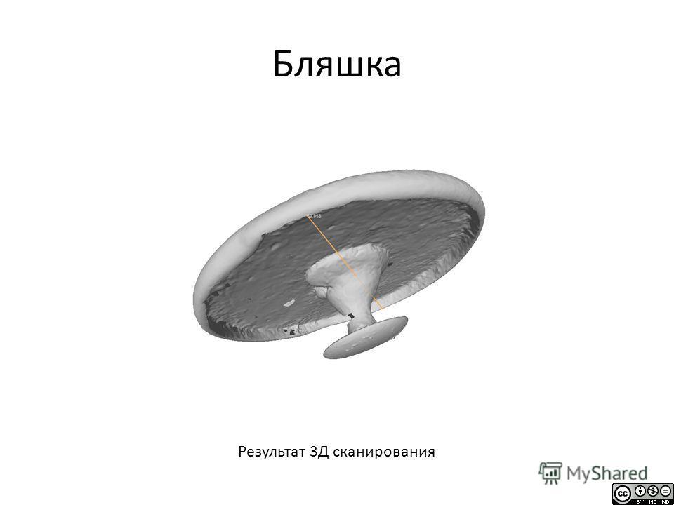 Бляшка Результат 3Д сканирования