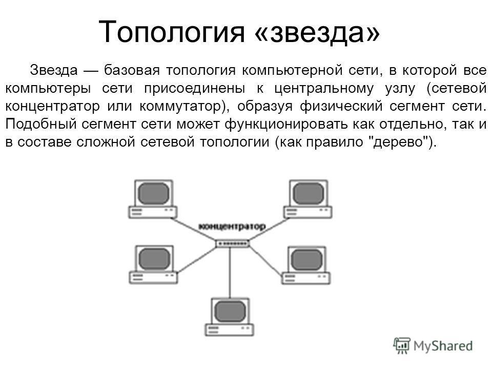 Топология «звезда» Звезда базовая топология компьютерной сети, в которой все компьютеры сети присоединены к центральному узлу (сетевой концентратор или коммутатор), образуя физический сегмент сети. Подобный сегмент сети может функционировать как отде